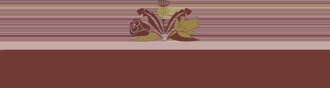 5da035b4754316a803469133 northern belle logo - Home